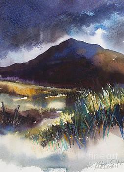 Connemara Coast II by Kate Bedell