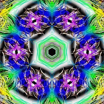 Conscious Waveforms by Derek Gedney