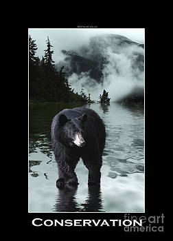 Conservation - Black Bear by Skye Ryan-Evans