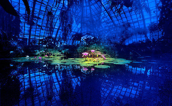 Daniel Furon - Nymphaea Conservatory