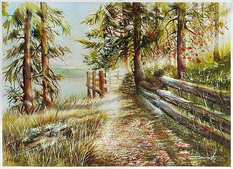 Contemplation piont-Whistler by Dumitru Barliga