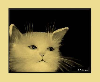 Contemplative Cat   No 5 by Diane Strain