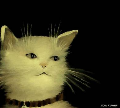 Contemplative Cat   No.1 by Diane Strain