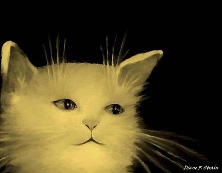 Contemplative Cat   No.3 by Diane Strain