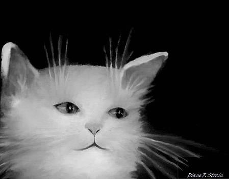 Contemplative Cat   No.4 by Diane Strain