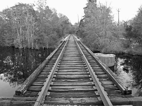 Conway SC Riverwalk 3 by Making Memories Photography LLC