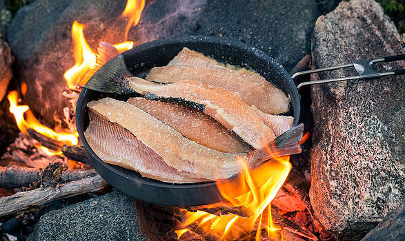 Cooking Brown Trout with Campfire by Janne Mankinen