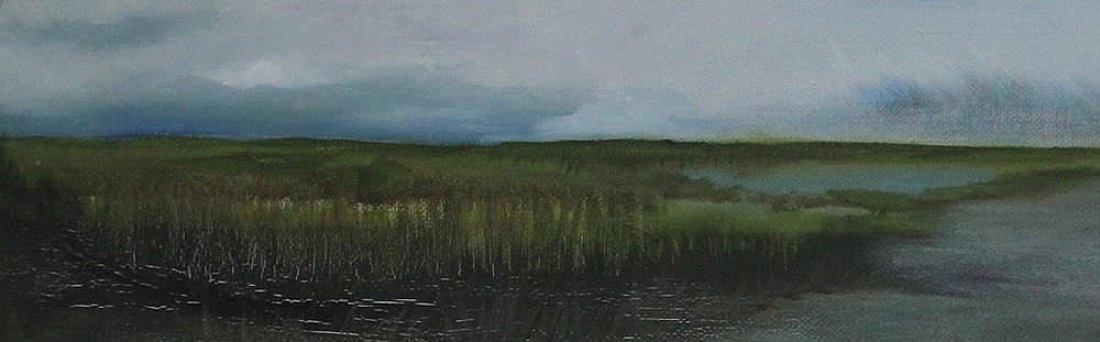 Cool greens marsh by Amy Fissell