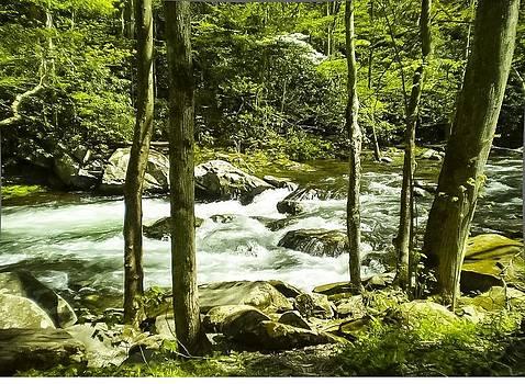 Cool Water by Robert J Andler