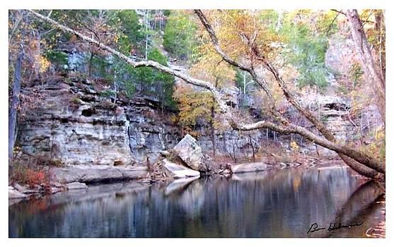 Coon Creek by Brian Hubmann
