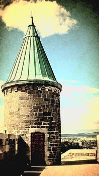 Laura Carter - Cooper Roof Tower Photograph