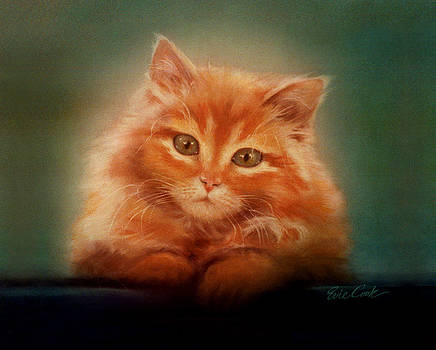 Copper-colored Kitty by Evie Cook