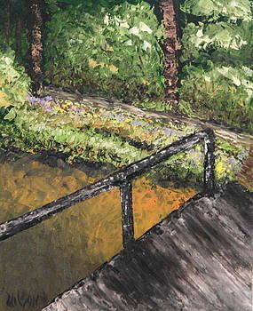 Copper Creek by Chrys Wilson