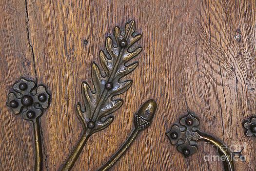 Charles Lupica - Copper oak