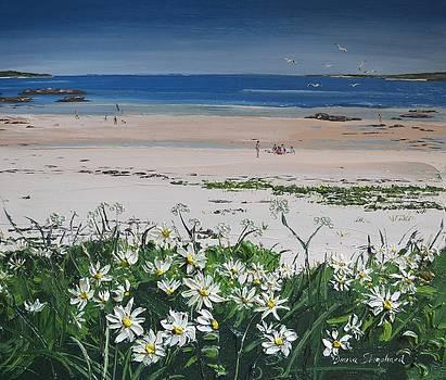 Coral Strand Seaside Connemara by Diana Shephard