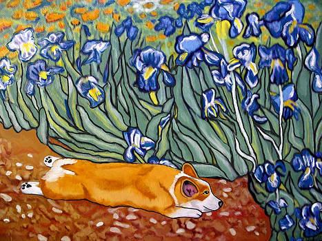Corgi in Irises by Karen Howell