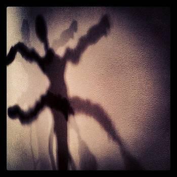 Corkscrew Ballet #shadow #art by Christy Borgman
