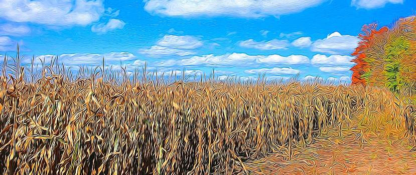Corn field by Peter Jackson