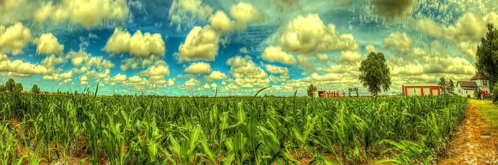 Corn field panorama by  Caleb McGinn