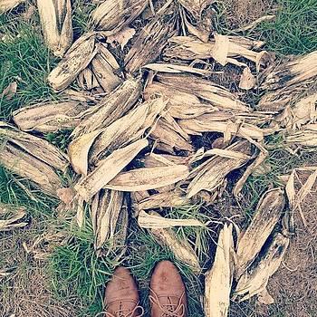 Corn Husks by Rebecca Guss