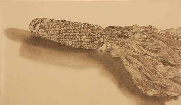 Corn by Michelle Miron-Rebbe