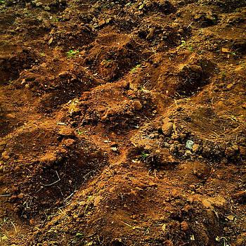 Corn Mounds by Maura Garcia