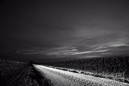 Corn Road by John Cooper