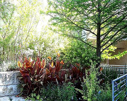 Corner Garden by Deleas Kilgore