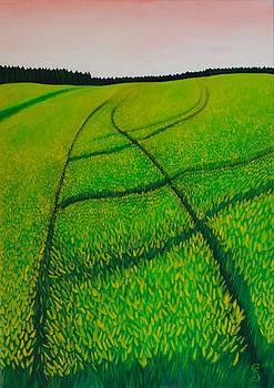 Cornfield by Sven Fischer