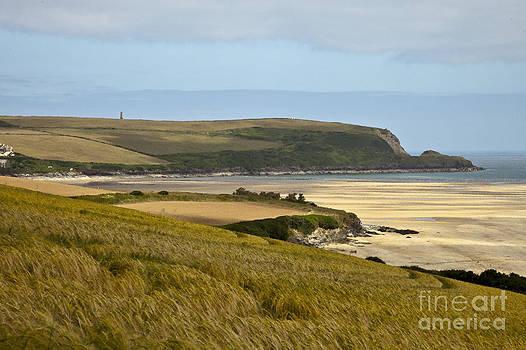 Cornish coast by Anthony Morgan