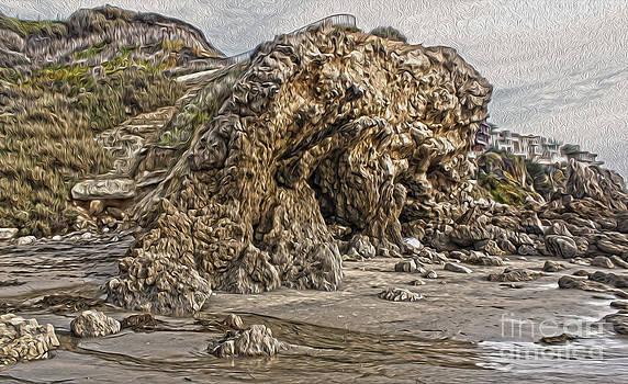 Gregory Dyer - Corona del Mar Sea Cave