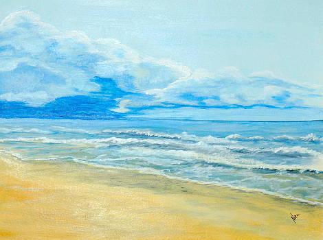 Coronado Bay Panama by Nancy Nuce