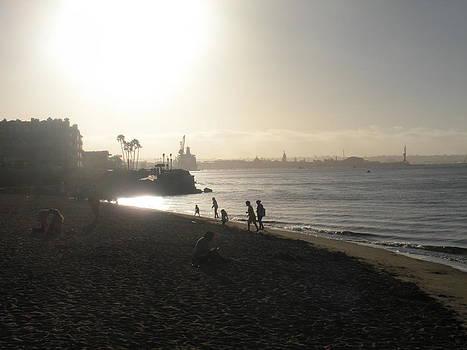 Coronado Beach by Anastasia Trekles