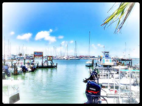Corpus Bay by Jeremy Linot