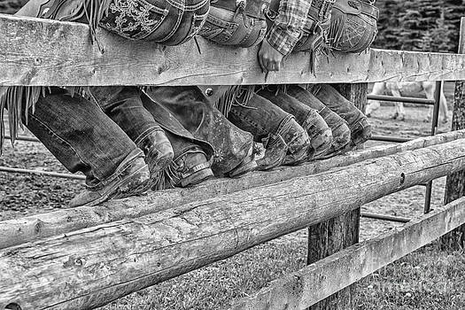 Corral Seating by Danny  Nestor