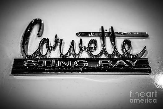 Paul Velgos - Corvette Sting Ray Emblem