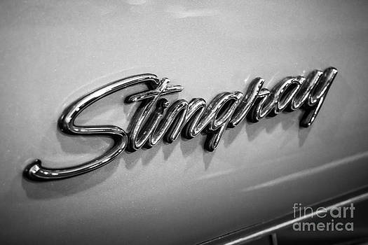 Paul Velgos - Corvette Stingray Emblem Black and White Picture