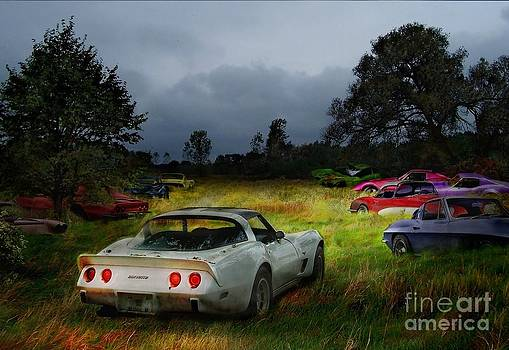 Corvettes by Tom Straub