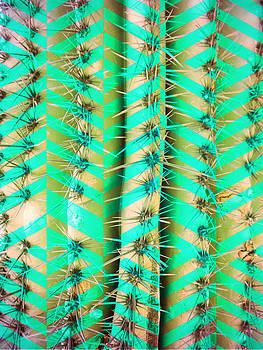 Cosmic Cactus 10 by Michelle Dallocchio