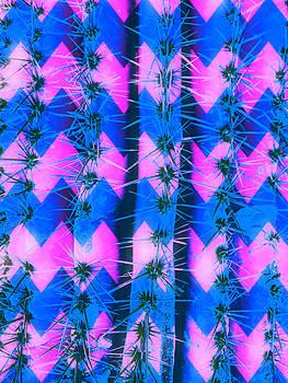 Cosmic Cactus 7 by Michelle Dallocchio