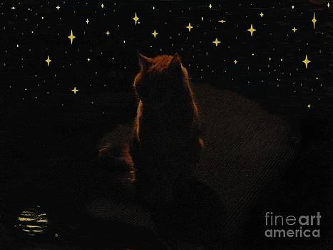 Cosmic Kitty by Jacquelyn Roberts