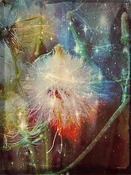 Linda Sannuti - Cosmic Nature