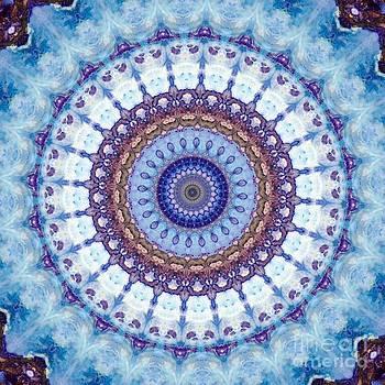Cosmic Wish by Denise Nickey