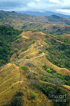 Costa Rica Scenic Landscape by Carrie Cranwill
