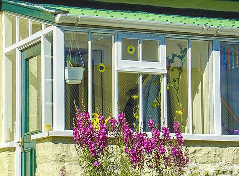 Julie Palencia - Cottage in Stanley