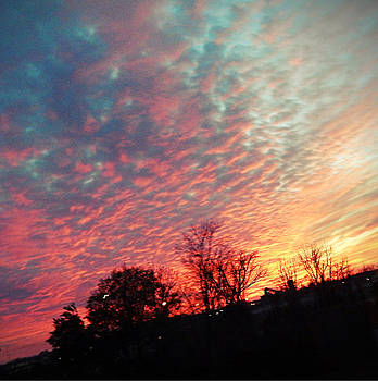 Cotton Candy Sky by Joetta Beauford