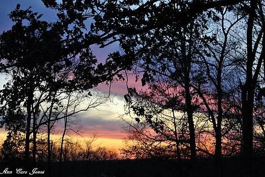 Cotton Candy Sunset 111111 by Anna Liza Jones