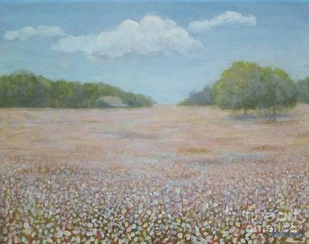 Cotton Field by Jean Ehler
