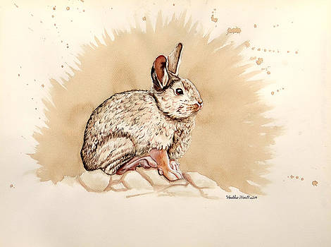 Cottontail  by Heather Stinnett