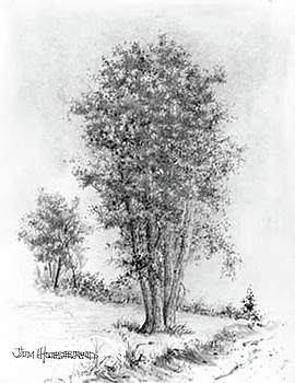 Jim Hubbard - Cottonwood